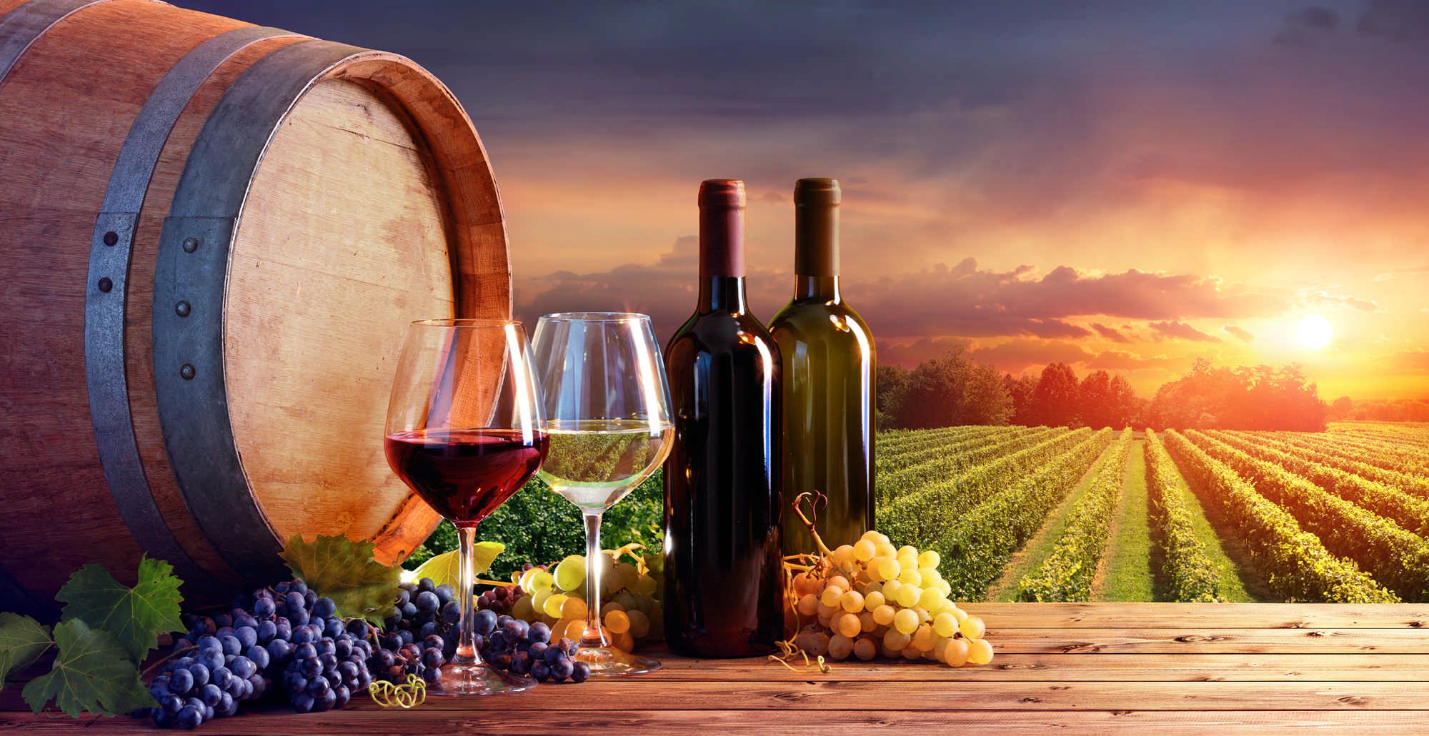 Vína a destiláty