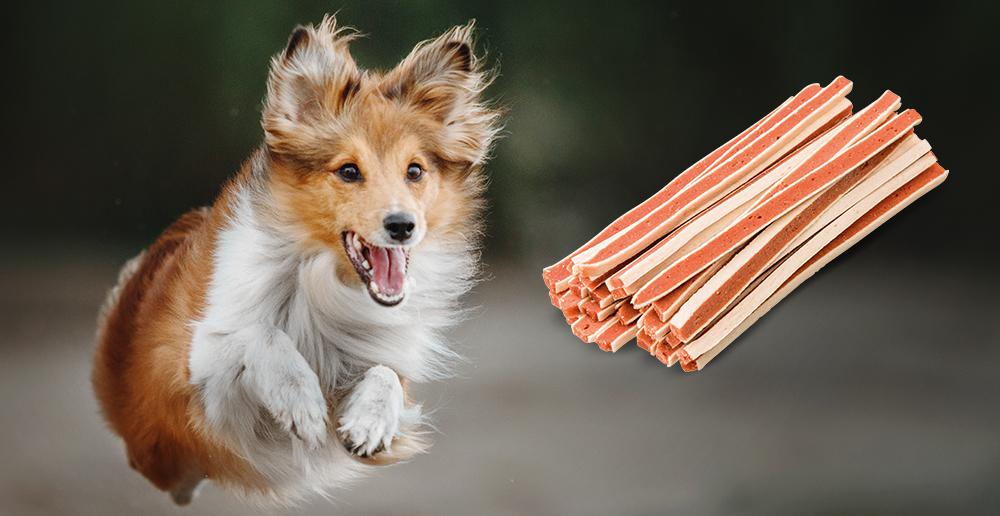 Maškrty pre psov