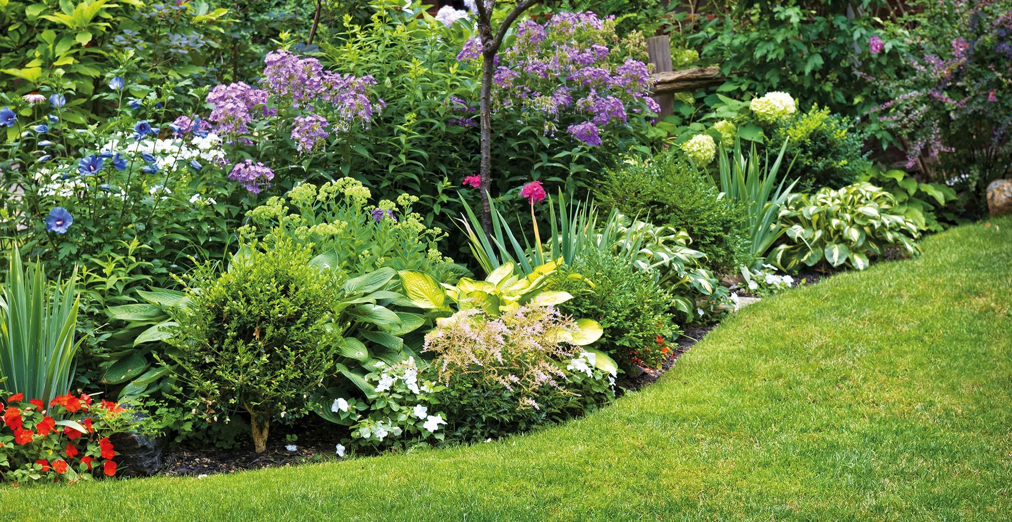 Hnojenie záhrady